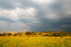 Thunderstorm landscape, South Africa. stock images