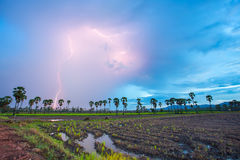 Thunderstorm. With lightning in green meadow. Dark ominous clouds royalty free stock image
