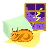 Thunderstorm outside window, cat sleeps on pillows. Vector cartoon color image. Thunderstorm outside the window, cat sleeps on yellow and green pillows. Vector Royalty Free Stock Photo