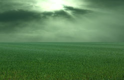Thunderstorm over Meadow. All kept in a greenish-colour Royalty Free Stock Photo