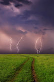 Thunderstorm at the spring field. On sunset Royalty Free Stock Image