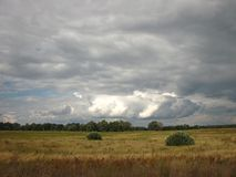 Before the thunderstorm. Summer, Sky, wind, thunderstorm clouds, field Royalty Free Stock Photo