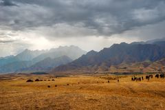 Thunderstorm View Towards Kyrgyzstan in Southern Kazakhstan take stock image