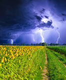 Thunderstorm way Stock Image