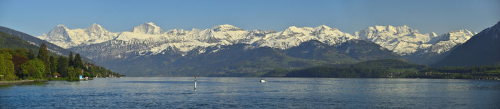 Thunersee and Berner Oberland. Swiss Alps. Panoramic view of Thunersee and Berner Oberland. Swiss Alps Royalty Free Stock Photos