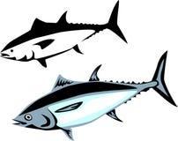 Thunfisch Stockbild