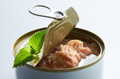 Thunfisch-Klumpen stockfoto