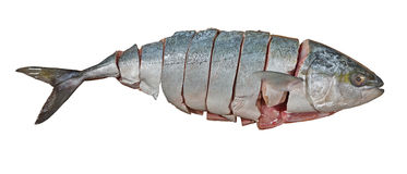 Thunfisch schnitt in Stücke Lizenzfreies Stockfoto