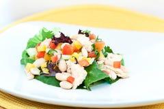 Thunfisch-und Bohnen-Salat Stockbilder
