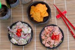 Thunfisch und Lachse Ceviche Lizenzfreie Stockfotografie