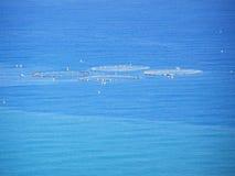 Thunfischfischen, Netze im Meer Stockbilder