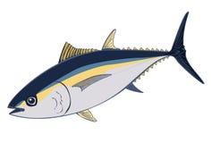 Thunfischillustration, Sashimithunfisch lokalisiert auf Weiß Lizenzfreie Stockfotos