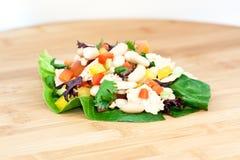 Thunfischsalat mit Bohnen Lizenzfreie Stockbilder