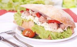 Thunfischsandwich Lizenzfreies Stockfoto