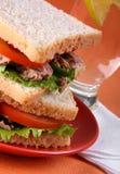 Thunfischsandwich stockbild
