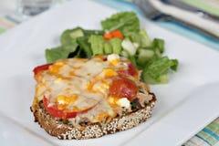 Thunfischschmelze mit seitlichem Salat. lizenzfreies stockbild