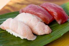 Thunfischsushi Lizenzfreie Stockfotos