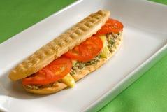 Thunfischtomate und Käse gegrilltes panini Sandwich stockfotos