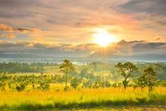 Thung萨朗Luang 免版税图库摄影