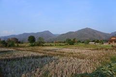 Thung Chang District Images libres de droits