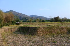 Thung Chang District Image libre de droits
