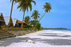 Thung wua laen beach. A beach is beautiful,  coconut tree, hut, a sea green water,   the sky is blue Stock Photos