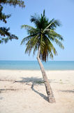 Thung Wua Laen Beach Royalty Free Stock Photo