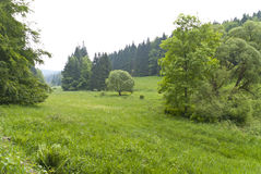 Thuringian Forest Royalty Free Stock Photography