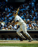 Thurman Munson New York Yankees Stock Photo