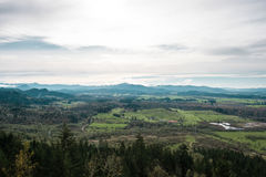 Thurston Hills Natural Area Scenic landskap Royaltyfri Bild