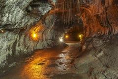 Thurston Lava Tube auf großer Insel Hawaiis stockfoto
