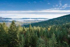 Thurston wzgórzy Naturalnego terenu Sceniczny krajobraz Obraz Stock