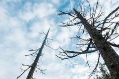 Thurston wzgórzy Naturalnego terenu Sceniczny krajobraz zdjęcia royalty free
