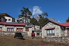 Thyangboche Monastry. Trekking from Deboche to Khumjung Nepal Sagamatha National Park Stock Photography