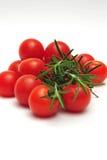 Thym et tomates-cerises Photographie stock