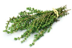Thyme Stock Image