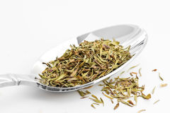 Thyme. Spoon full of thyme seasoning stock photography