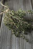 Thyme - aromatic plant of the mint family are used as a culinary herb. And the plant yields a medicinal oil stock photo