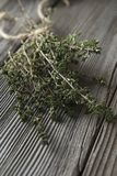 Thyme - aromatic plant of the mint family are used as a culinary herb. And the plant yields a medicinal oil royalty free stock photo
