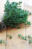 Thyme bouquet. Royalty Free Stock Images