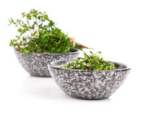 Thyme in bowl Royalty Free Stock Images