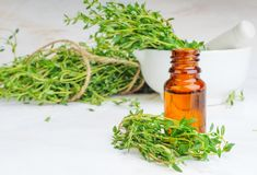 Thyme essential oil in glass bottle and twigs Stock Image