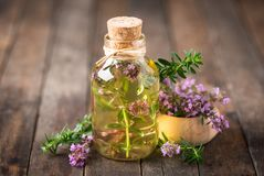 Thyme essential oil. On the wooden table royalty free stock photos