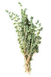 Thyme fresh herb Royalty Free Stock Photography