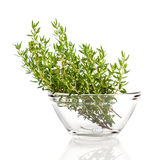 Thyme in the glass bowl Royalty Free Stock Image