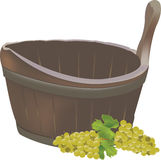 Thyme grape harvest. Thyme blows for half-container harvest Royalty Free Stock Photo