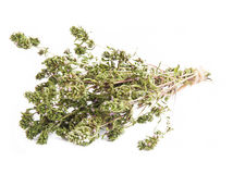 Thyme Herb Isolated Stock Photo