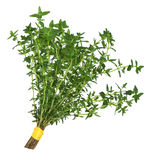 Thyme Herb Leaf Posy. Thyme herb leaves tied in a posy isolated over white background Stock Photo