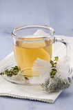 Thyme Herbal Tea Stock Image