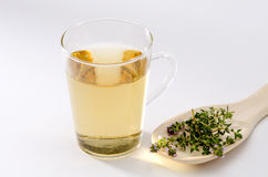 Thyme Herbal Tea Royalty Free Stock Photography